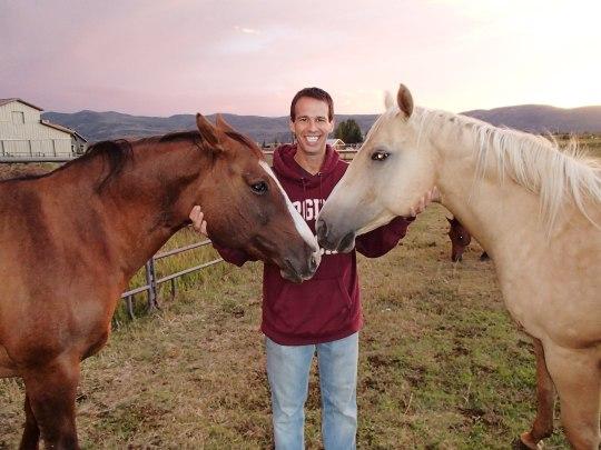 Horses in Utah