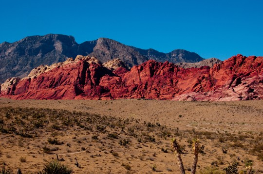 Red Rock Canyon, about 30 minutes from North Vegas.