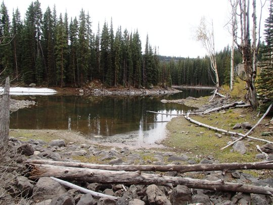 Grand Mesa pond walk