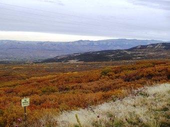 Grand Mesa , CO. Oct. 2014.