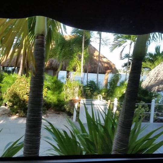 """The view from my RV """"office"""" at Bluewater Key RV Resort, Nov. 2015."""
