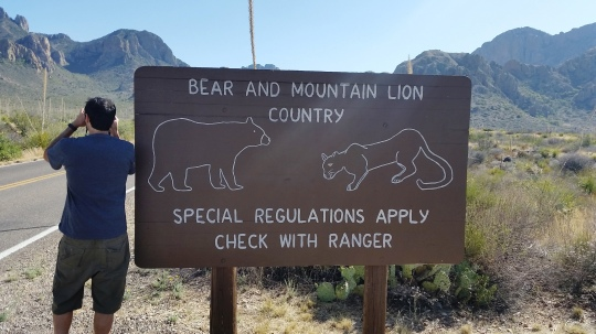 Big Bend Bear and Mountain Lion Country Sign; (c) RVLuckyOrWhat.com